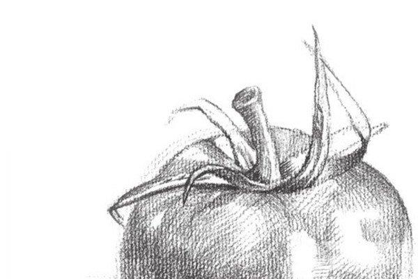 乡村风景素描作品欣赏_素描教程_学画画_我爱画画网