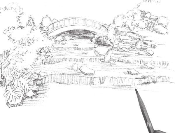 速写小溪的绘画步骤(2)