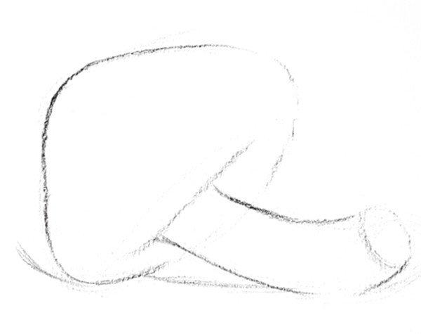 素描雨伞菇的绘画步骤二