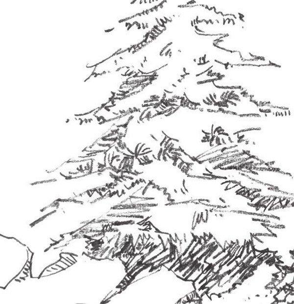 单个树木的画法步骤二-1-速写单个树木的四中技法图片