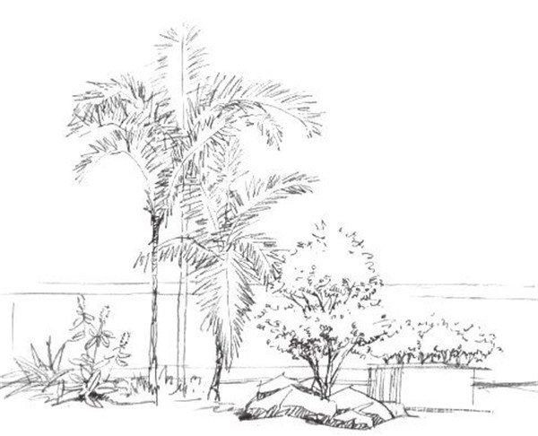 4、添加画面的景物,并用明暗来表现出立体感,注意树的造型及笔触。  素描树丛的绘画步骤四 5、继续丰富画面,注意物体细节的刻画,阴影部分要强调一下,能更好地凸显物体。  素描树丛的绘画步骤五 6、加强暗部阴影的绘制,调节画面,注意画面效果的调节,完成画面。  素描树丛的绘画步骤六 上述六步骤,教你轻松完成一幅树丛素描画,赶紧来试试吧!