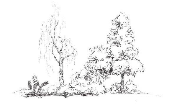 速写树丛的绘画步骤