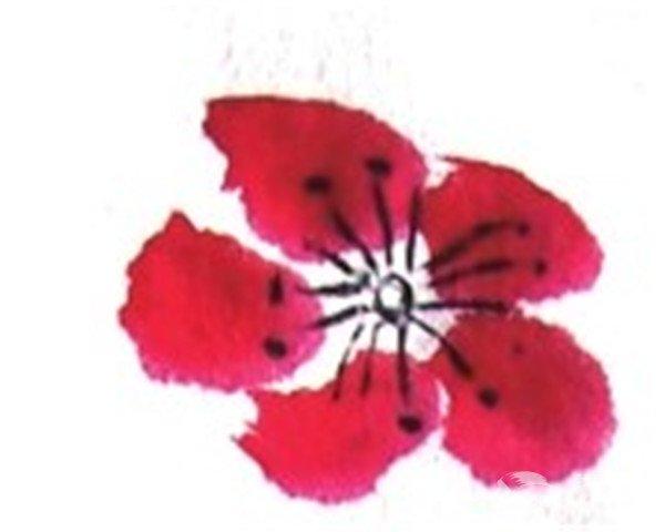 国画梅花的绘画步骤教程   1,用狼毫笔调曙红点出梅花的花瓣.