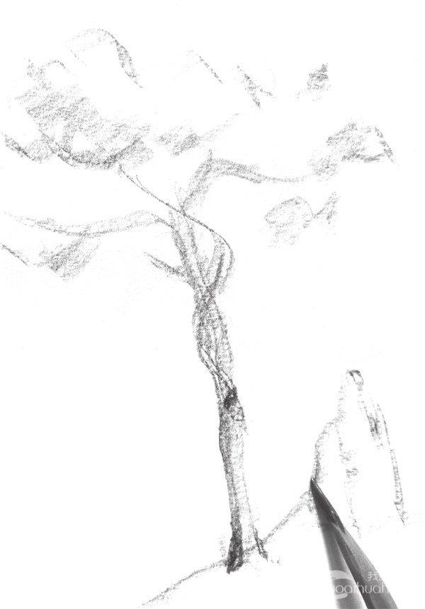 1、将笔卧倒画出树的大致轮廓,并添加少量的明暗来表现体积感。  速写松树的绘画步骤教程一 2、在画的时候要注意画面的构图和体积感的加强,注意不要忽略细节。  速写松树的绘画步骤教程二 3、修改轮廓线,将树的造型清晰化,要注意明暗的过渡。  速写松树的绘画步骤教程三 在画树时,首先要对树干有一个总体的印象,画起来就较易总体把握了。树干因各自的树种不同,除了姿态各异之外,在纹理上也各有自己的特征,作画时要特别留意。另外,画几棵树在一起时,要注意树干的各自姿势及相互的呼应关系。 4、修改石头的轮廓线,并强调树的
