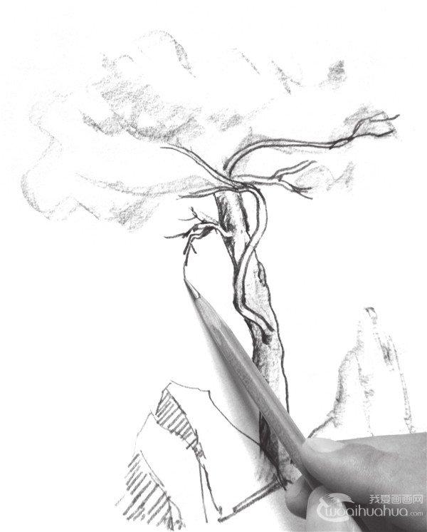 学画画 速写教程 速写场景 > 速写松树的技法步骤教程      1,将笔