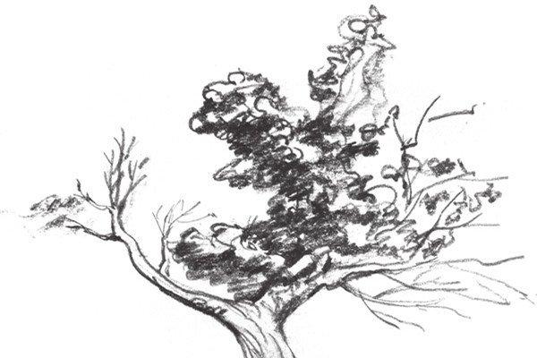 村庄风景水彩画图片系列 枯树草屋图 3