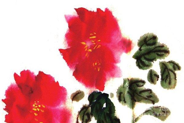 国画红牡丹的绘画教程