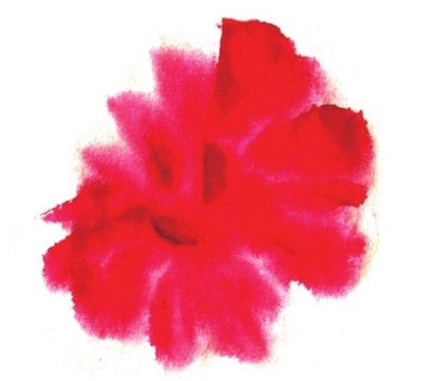 国画红牡丹的 绘画教程    1,用狼毫大号调浅曙红点画出牡丹的花瓣