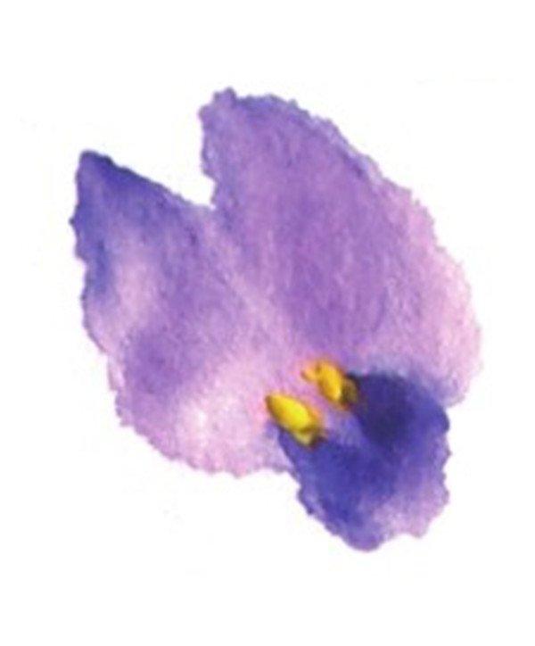 国画紫藤花的绘画步骤教程