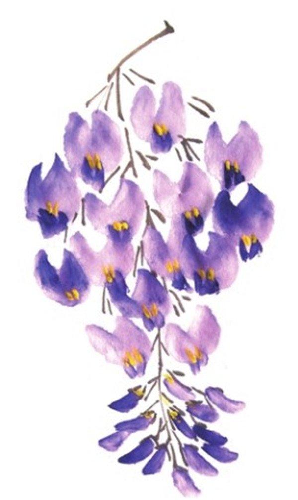 国画紫藤花的绘画步骤教程(2)_国画教程_学画画_我爱