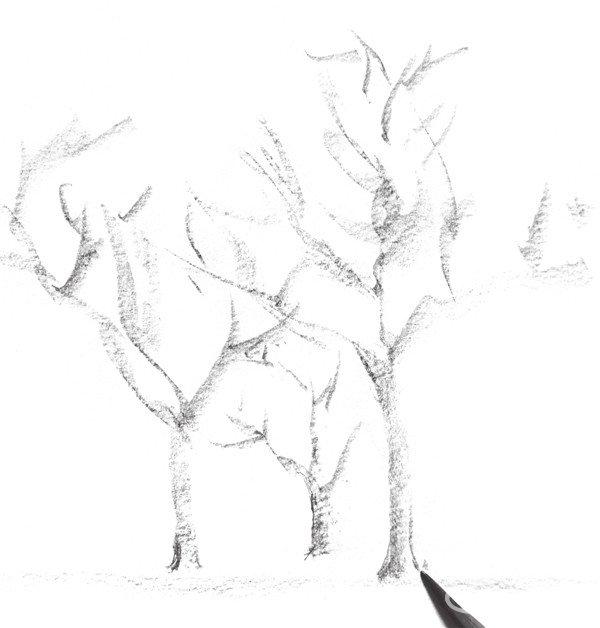 三棵树的绘画步骤一