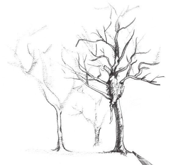 简笔画 手绘 素描 线稿 600_540