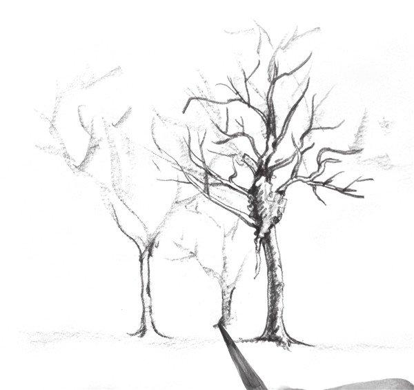 速写物体比例的绘画教程(2)