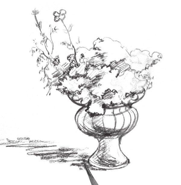 速写盆花的绘画步骤教程八