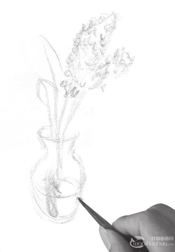 速写瓶花的绘画步骤