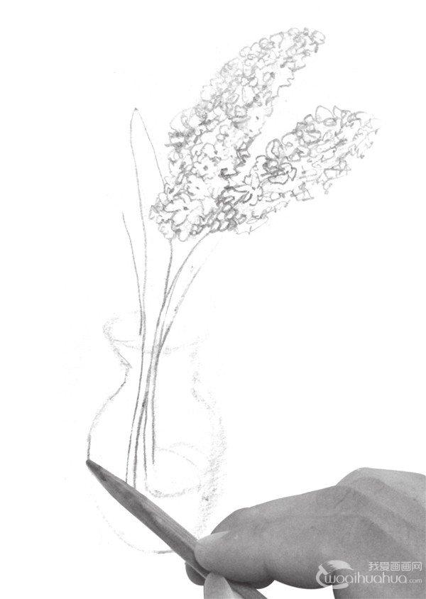 速写瓶花的绘画步骤 2