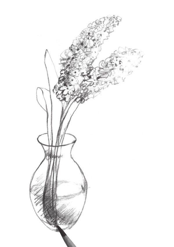 速写瓶花的绘画步骤(3)图片
