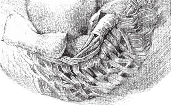 素描苹果篮的绘画步骤教程(2)