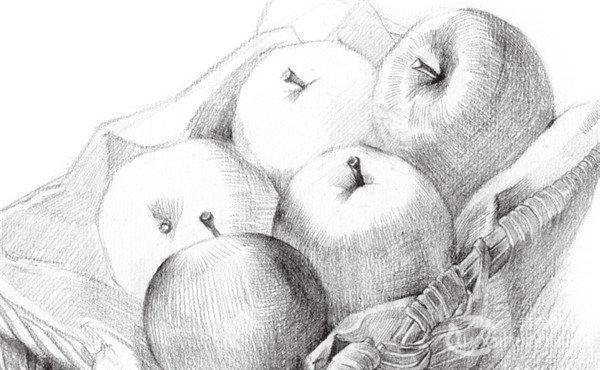 素描苹果篮的绘画步骤教程(3)