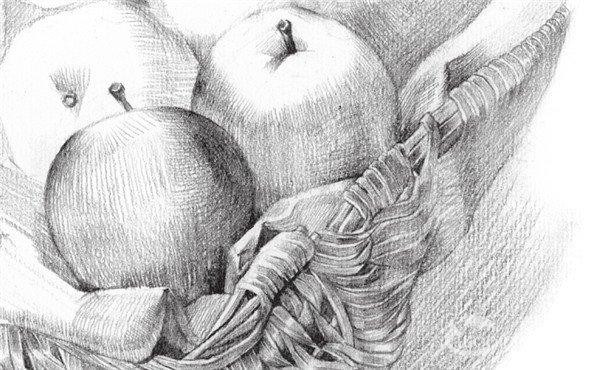 素描苹果篮的绘画步骤教程 4图片