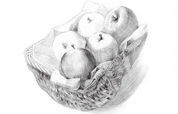 素描苹果篮的绘画步骤教程 5图片