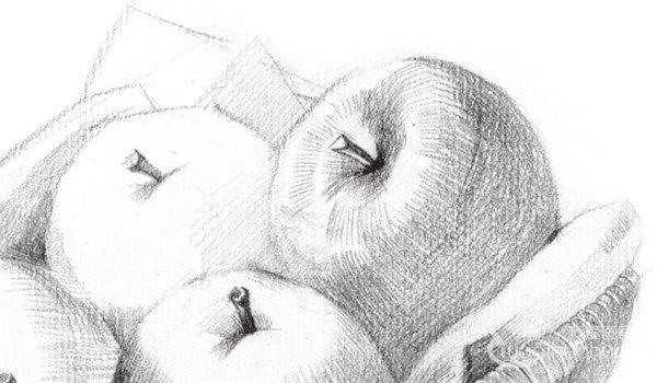 素描苹果篮的绘画步骤教程(5)