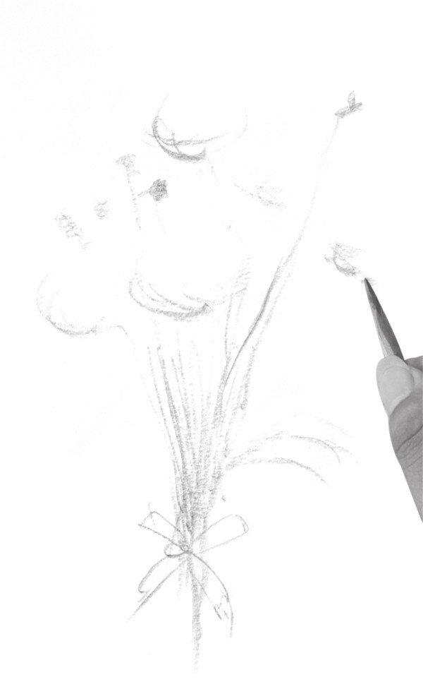 速写一束花的绘画步骤