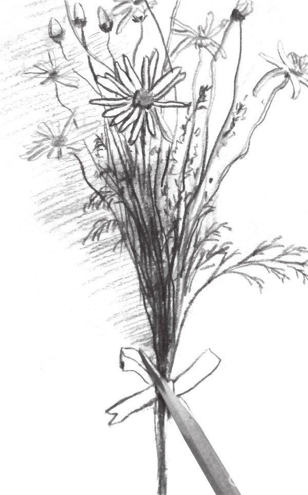 速写一束花的绘画步骤 5