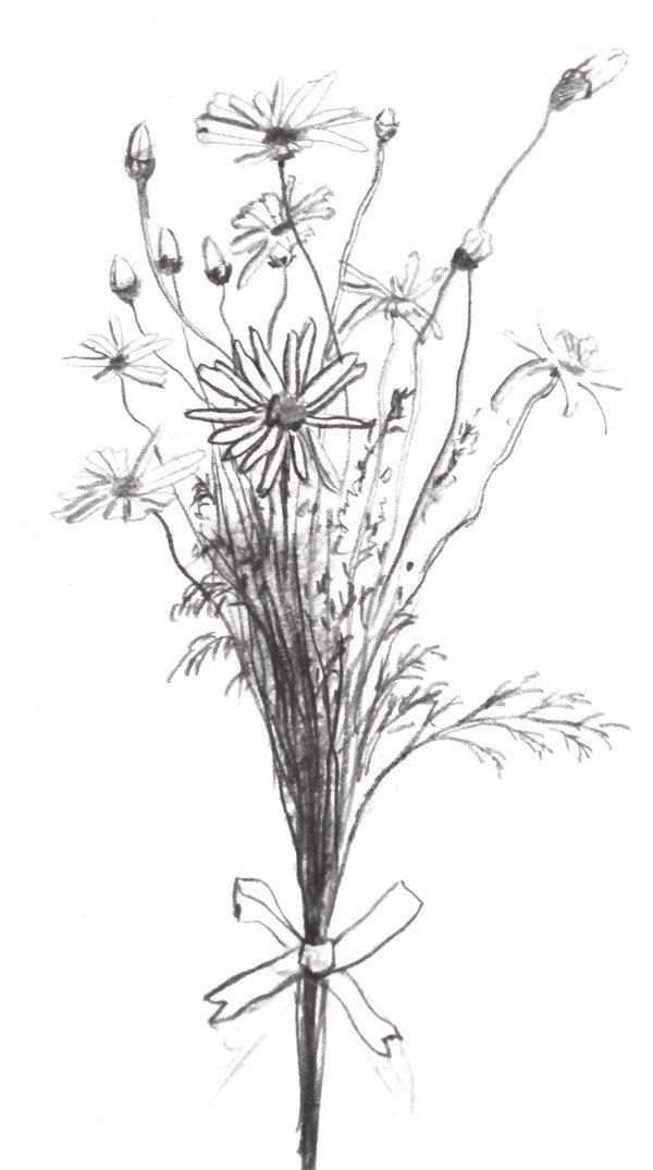 美术作品铅笔画花朵图片_美术作品铅笔画花朵图片下载