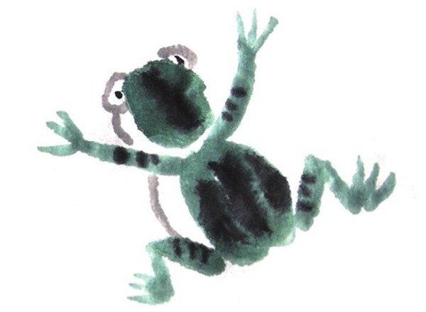 国画青蛙眼睛纹路