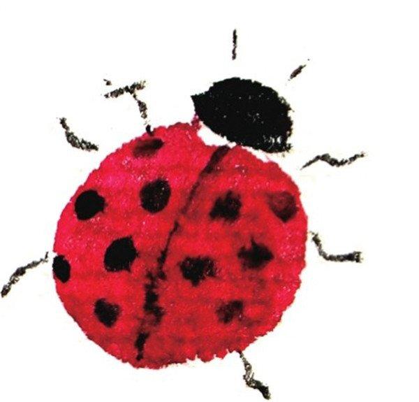 国画七星瓢虫的绘画步骤教程