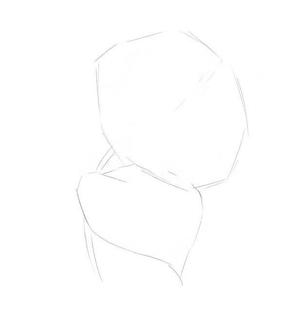 素描绣球花的绘画步骤一
