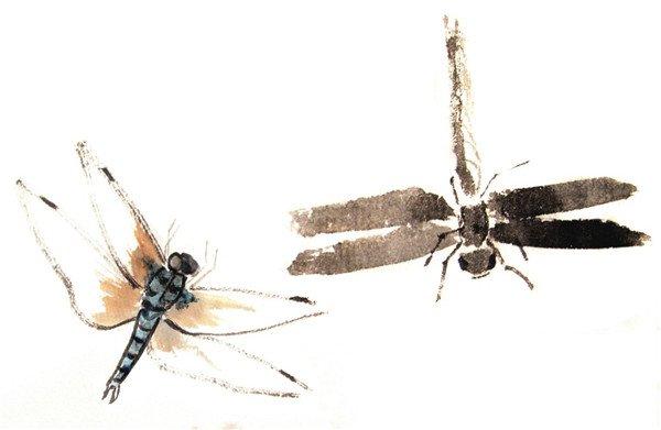 国画蜻蜓的绘画步骤六