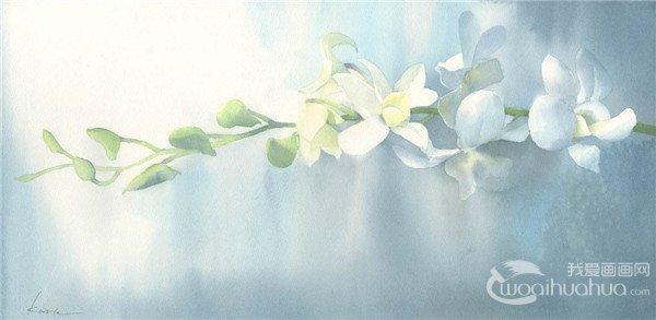 日本绘画工作室Harusaki Watercolor水彩画作品欣赏
