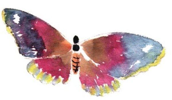 5,各类蝴蝶,画侧面的蝴蝶要画出前后翅膀的颜色变化,近实远虚.