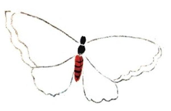 国画蝴蝶的绘画步骤二