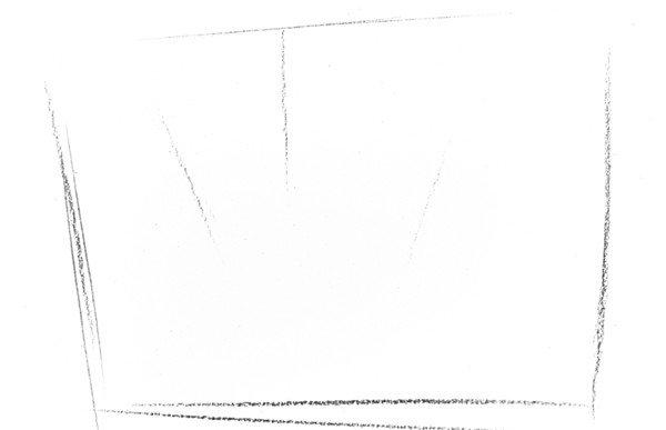 素描植物瓶子草的绘画步骤教程一