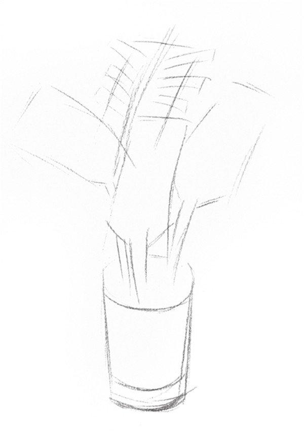 1、画出椰子树的大轮廓线,注意物体形态位置。  素描椰子树的绘画步骤一 2、继续刻画出小椰子树的内轮廓线。  素描椰子树的绘画步骤二 3、擦除多余辅助线,画出小椰子树的轮廓,线条清晰。  素描椰子树的绘画步骤三