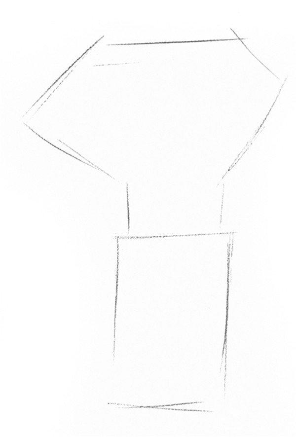 素描椰子树的绘画步骤一