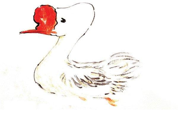 国画鹅的绘画教程