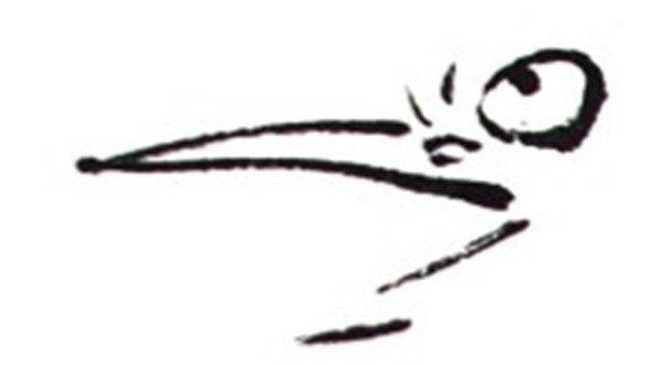 国画喜鹊的画法步骤教程