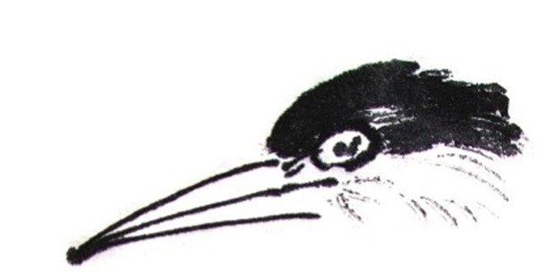 水墨翠鸟的绘画教程