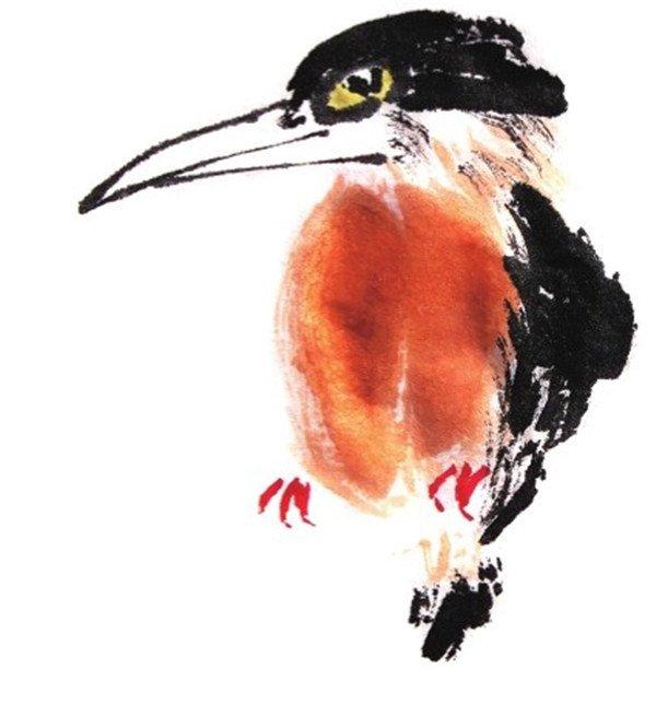 水墨翠鸟的绘画教程 3