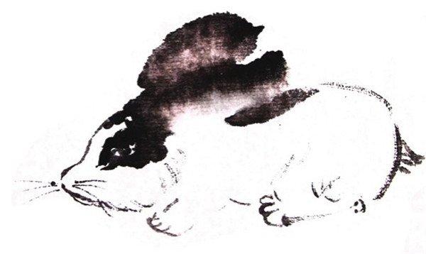 国画兔子的绘画技法(4)