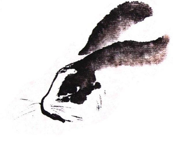 国画兔子的绘画步骤三