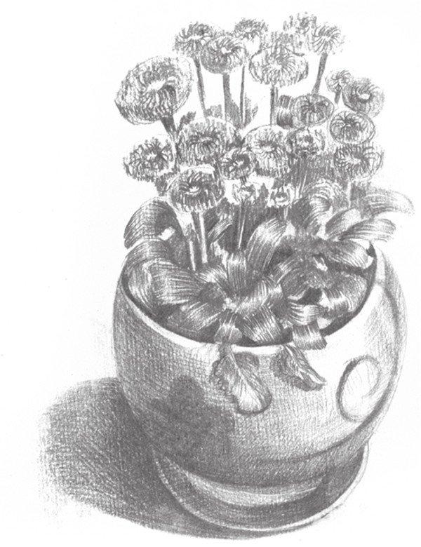 素描雏菊的绘画步骤(4)_素描教程_学画画_我爱画画网