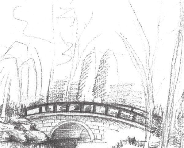 2、继续刻画出植物园景色的轮廓线,进一步增加植物园的细节部分的刻画。  素描植物园的绘画步骤二 3、深入刻画植物园中的小桥,加重暗部颜色。增强色调的对比,运用近实远虚的绘画方法。  素描植物园的绘画步骤三