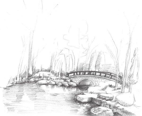 学画画 素描教程 素描风景 > 素描植物园的绘画技法(4)      6,继续