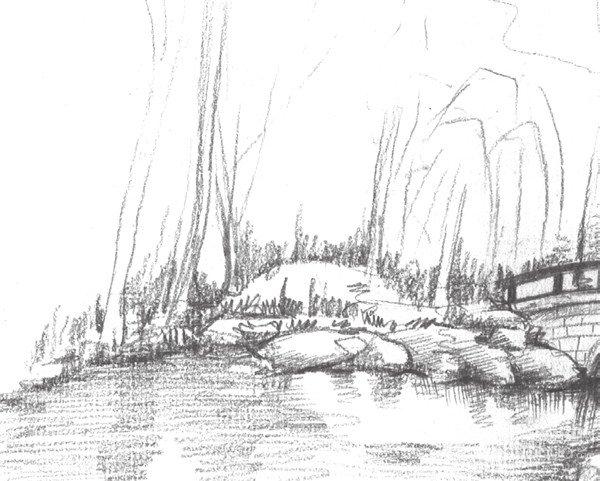 学画画 素描教程 素描风景 > 素描植物园的绘画技法(3)      4,画出