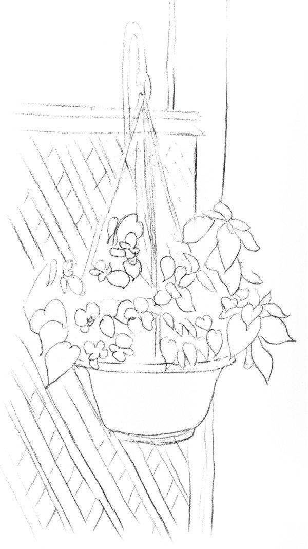 学画画 素描教程 素描风景 > 素描栅栏花藤的绘画教程(2)      一